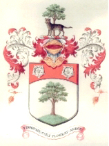 1904 coat of arms (scan of original document)